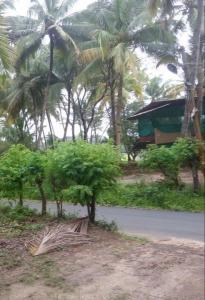 2625 Sq.ft Residential Plot for Sale in Salcete, Goa