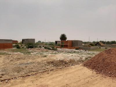 900 Sq.ft Residential Plot for Sale in Sorkha, Noida