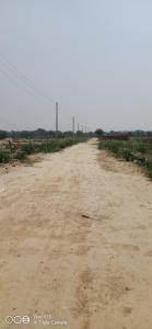3600 Sq.ft Residential Plot for Sale in Noida Extension, Greater Noida