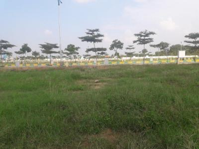 Gallery Cover Image of  Sq.ft Residential Plot for buy in Bhanur for 3841000