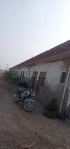 100 Sq.ft Residential Plot for Sale in Kosi Kalan, Mathura