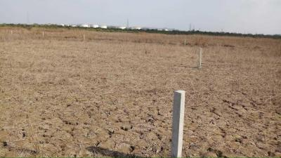 Gallery Cover Image of  Sq.ft Residential Plot for buy in Uran for 500000