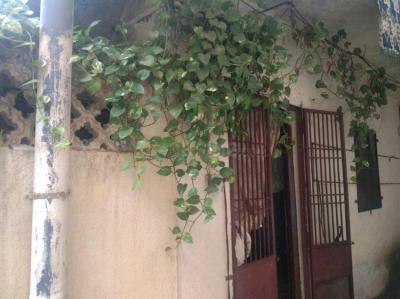 Gallery Cover Image of 450 Sq.ft 1 RK Independent House for buy in Yerawada for 2500000