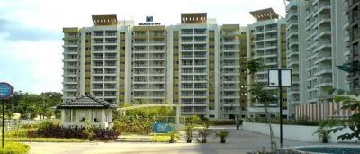 Gallery Cover Image of 1650 Sq.ft 3 BHK Apartment for rent in HSR Layout for 46000