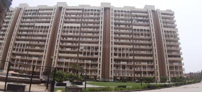 Gallery Cover Image of 1808 Sq.ft 4 BHK Independent Floor for buy in TDI TDI Tuscan City, Sector 58 for 5500000