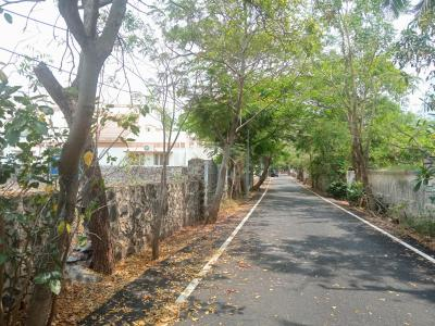 13110 Sq.ft Residential Plot for Sale in Neelankarai, Chennai