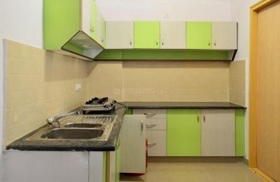 Kitchen Image of PG 4642000 Whitefield in Whitefield