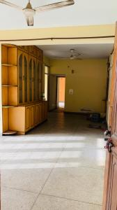 Gallery Cover Image of 1400 Sq.ft 3 BHK Apartment for rent in CGEWHO CGEWHO Kendriya Vihar 2, Sector 82 for 12800