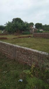 Gallery Cover Image of  Sq.ft Residential Plot for buy in Santoshpur for 8500000