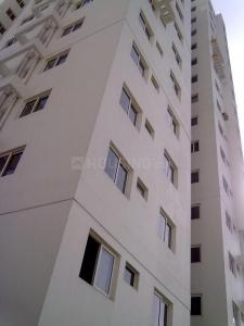 Gallery Cover Image of 1377 Sq.ft 3 BHK Apartment for rent in Maheshtala for 13000
