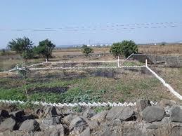 1089 Sq.ft Residential Plot for Sale in Uran, Navi Mumbai
