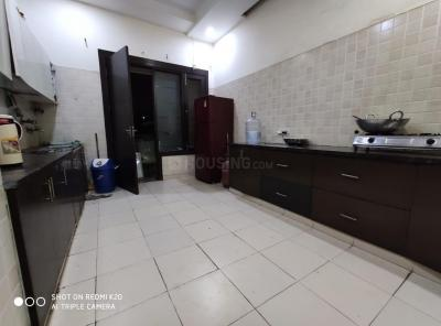 Kitchen Image of Girls PG In Noida in Sector 18