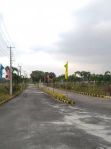 146 Sq.ft Residential Plot for Sale in Shamshabad, Hyderabad