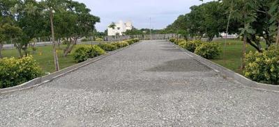 805 Sq.ft Residential Plot for Sale in Pudupakkam, Chennai