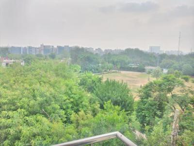 Balcony Image of Shivansh PG in Sector 45