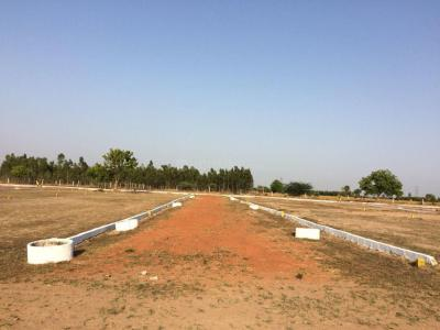 Gallery Cover Image of  Sq.ft Residential Plot for buy in Thirunindravur for 315000