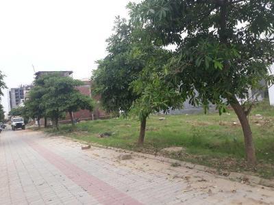 165 Sq.ft Residential Plot for Sale in Ansal City, Meerut