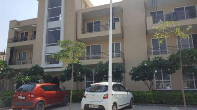 Gallery Cover Image of 1103 Sq.ft 3 BHK Independent Floor for rent in Sector 77 for 12000
