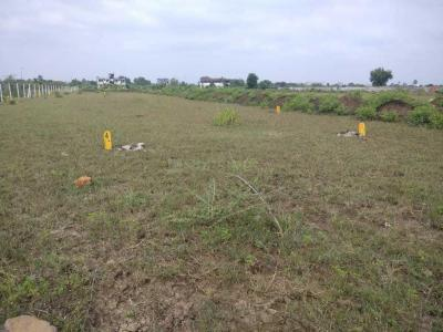 Gallery Cover Image of  Sq.ft Residential Plot for buy in Gotal Pajri for 2160000