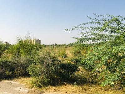 6615 Sq.ft Residential Plot for Sale in Tonk Phatak, Jaipur