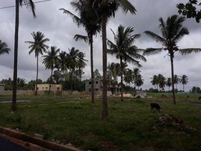 1200 Sq.ft Residential Plot for Sale in Sathnur Village, Bangalore