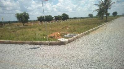 1800 Sq.ft Residential Plot for Sale in Pulimamidi, Hyderabad