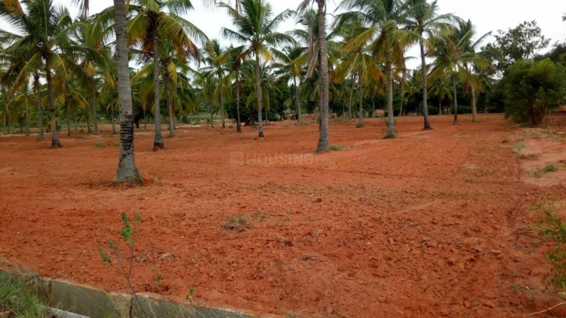 Plots for sale in Navarathna Agrahara | 21+ Lands for sale in