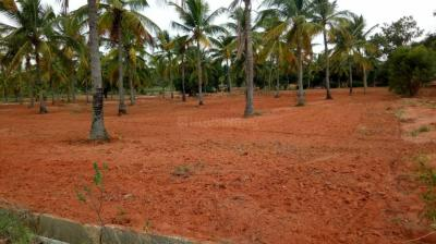 Gallery Cover Image of  Sq.ft Residential Plot for buy in Navarathna Agrahara for 7920000