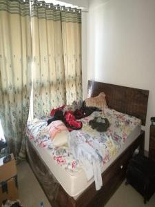 Gallery Cover Image of 900 Sq.ft 2 BHK Apartment for rent in Powai for 57000