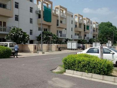 Gallery Cover Image of 1620 Sq.ft 3 BHK Independent Floor for buy in Sector 75 for 3100000