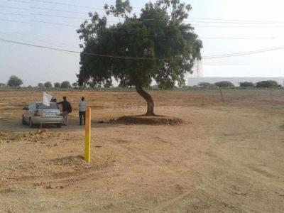 600 Sq.ft Residential Plot for Sale in Roberts Lines, Lucknow