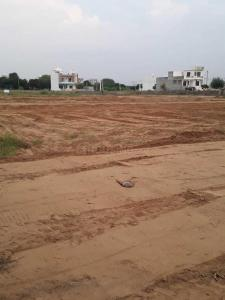 Gallery Cover Image of  Sq.ft Residential Plot for buy in Sanganer for 1650000