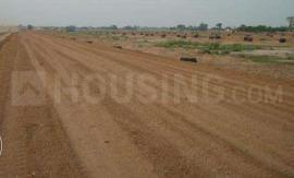 Gallery Cover Image of  Sq.ft Residential Plot for buy in Yeida for 1125000