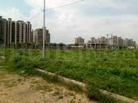 Gallery Cover Image of  Sq.ft Residential Plot for buy in Sector 77 for 5600000