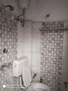 Common Bathroom Image of PG 5474256 Karol Bagh in Karol Bagh