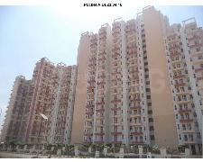 Gallery Cover Image of 1388 Sq.ft 3 BHK Apartment for buy in KLJ Platinum Heights, Sector 77 for 4500000