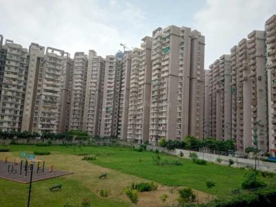Gallery Cover Image of 950 Sq.ft 2 BHK Apartment for rent in Sector 74 for 20000
