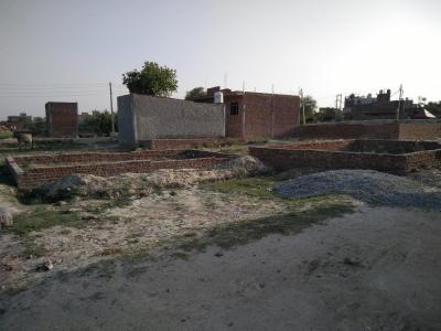 Gallery Cover Image of  Sq.ft Residential Plot for buy in Sangam Vihar for 575000