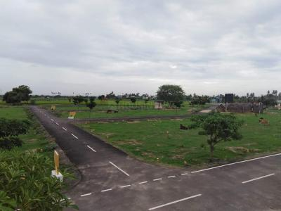 Gallery Cover Image of  Sq.ft Residential Plot for buy in Nemam for 646000