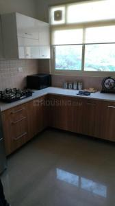 Gallery Cover Image of 1200 Sq.ft 2 BHK Independent Floor for rent in Sector 43 for 15000
