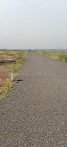 1000 Sq.ft Residential Plot for Sale in Khadki, Pune