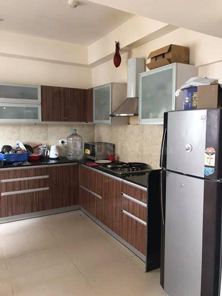 Kitchen Image of 1132 Sq.ft 2 BHK Apartment for rent in Wakad for 22000