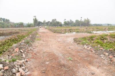 1800 Sq.ft Residential Plot for Sale in Shyamnagar, North 24 Parganas