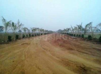 978 Sq.ft Residential Plot for Sale in Sardarpura, Jodhpur