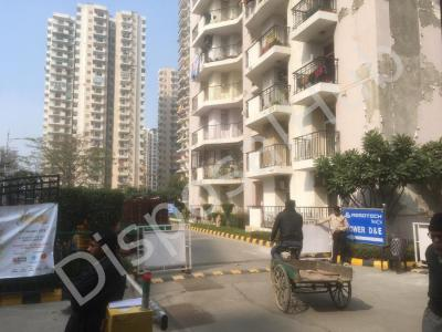 Gallery Cover Image of 1660 Sq.ft 3 BHK Apartment for buy in Crossings Republik for 4500000