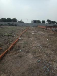 Gallery Cover Image of 900 Sq.ft Residential Plot for buy in Sector 167 for 300000