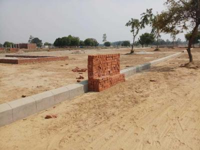 Gallery Cover Image of  Sq.ft Residential Plot for buy in Gomti Nagar for 1200000