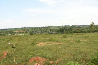 Gallery Cover Image of  Sq.ft Residential Plot for buy in Kammanahalli for 17640000