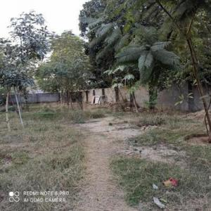 4500 Sq.ft Residential Plot for Sale in DLF Phase 3, Gurgaon