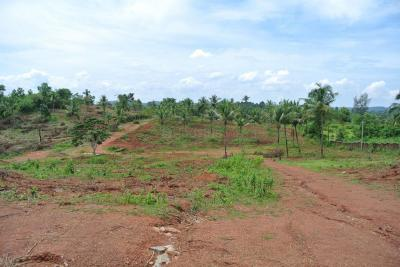 Gallery Cover Image of  Sq.ft Residential Plot for buy in Mangala Nagar for 5500000